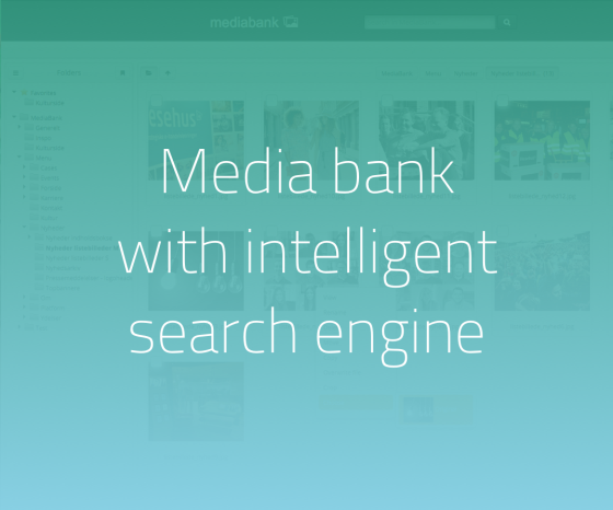 Hesehu Media Bank has an integrated intelligent search engine