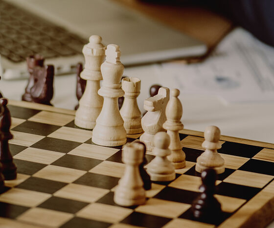 Hesehus - din strategiske e-handelspartner