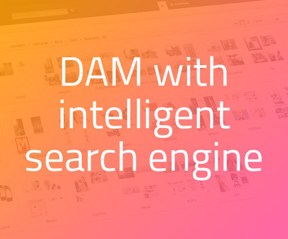 Bizzkit DAM has an integrated intelligent search engine