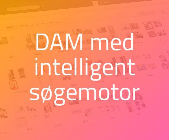 Bizzkit DAM - et sikkert sted til opbevaring af jeres visuelle materiale og automatiserer tunge arbejdsgange