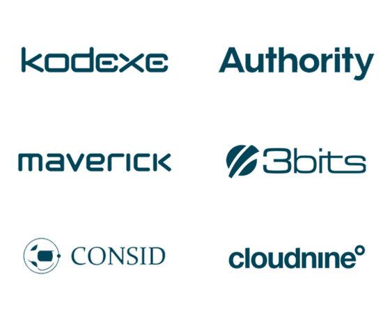 Bizzkit's six solution partners