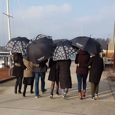 Hesehus-paraplyer