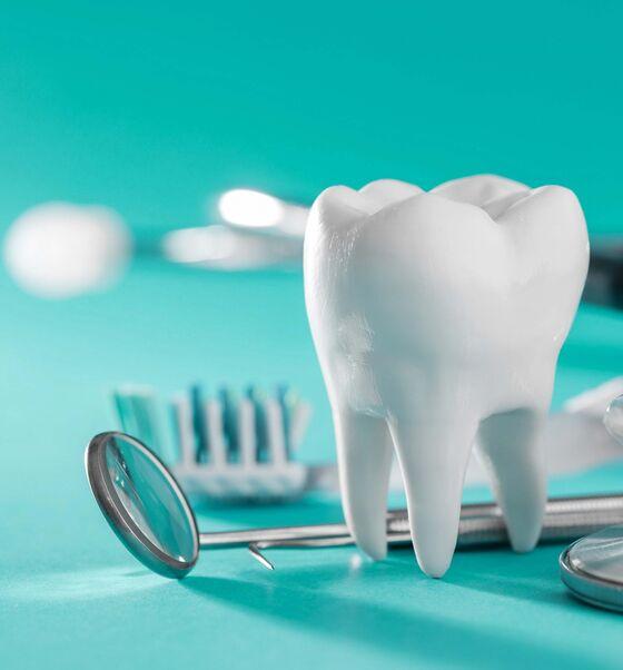 Plandent er Danmarks største leverandør af udstyr, forbrugsvarer m.v. til tandlægeklinikker