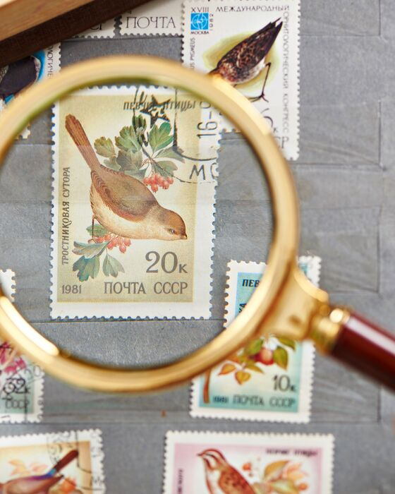 Nordfrim's webshop for the sale of stamps focuses on user-friendliness
